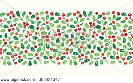 Colorful Hand Drawn Abstract Christmas Mistletoe Foliage Horizontal Vector Seamless Pattern Border.