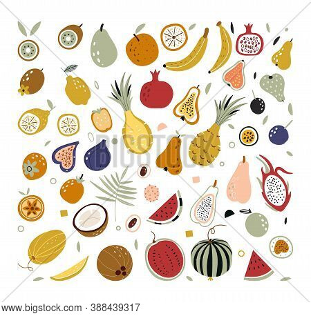 Hand Drawn Tropical And Exotic Fruits Isolated On White Background In Unique Trendy Organic Style. D