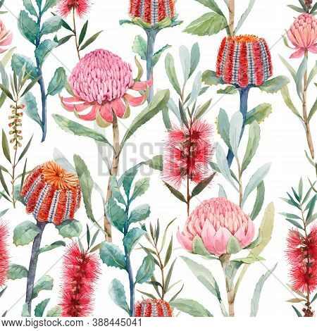 Beautiful Vector Seamless Floral Pattern With Watercolor Summer Protea And Australian Banksia Flower