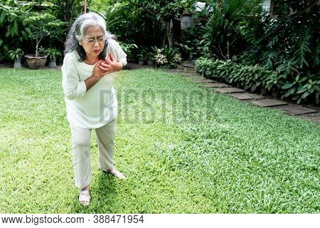 Asian Elderly Woman, Are Suffering From Angina Due To Heart Disease, As She Standing On The Green La