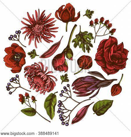 Round Floral Design With Colored Viburnum, Hypericum, Tulip, Aster, Leucadendron, Amaryllis Stock Il