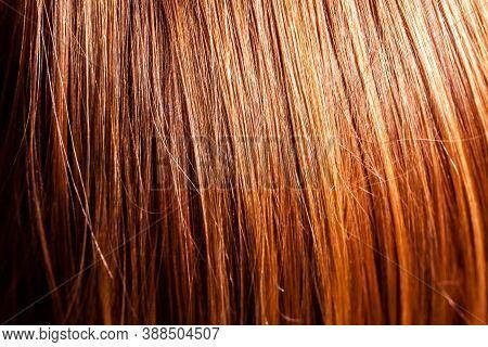Close Up Of Little Girls Long Hair