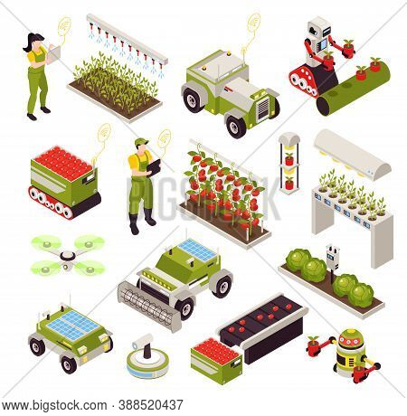 Isometric Smart Farm Set With Isolated Icons Of Vegetable Plants And Automated Machines With Human O
