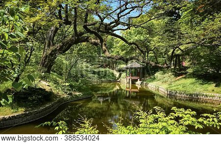Lotus Pond And Pavilion At The Huwon Park (secret Garden). Changdeokgung Palace (prospering Virtue P