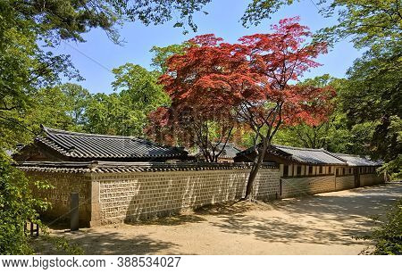 Changdeokgung Palace (prospering Virtue Palace) One Of The Five Grand Palaces Of The Joseon Dynasty.