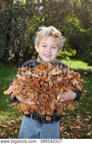 Young smiling boy holding an armful of fall leaves, focus on boys face