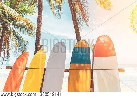 Surfboard And Palm Tree With Blue Sky On Beach Background. Travel Adventure Sport And Summer Vacatio