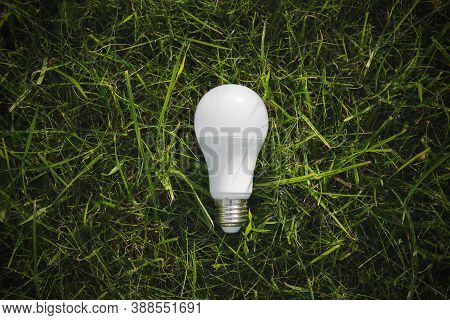 Top View Of Lamp On Green Grass, Energy Efficiency Concept