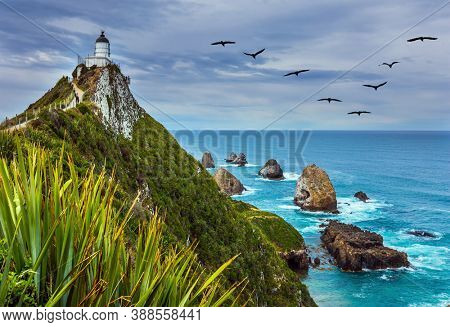 The picturesque coast of the Pacific Ocean. Nugget Point Lighthouse on the picturesque Cape Nugget. South Island, New Zealand. The concept of active, environmental and photo tourism