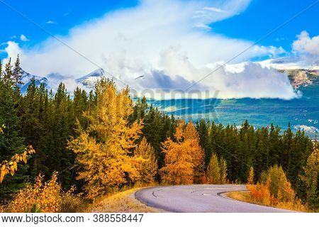 Mount Edith Cavell Road. Magnificent mountain road among coniferous forests and orange autumn aspens. The Rocky Mountains of Canada. Travel and photo tourism concept