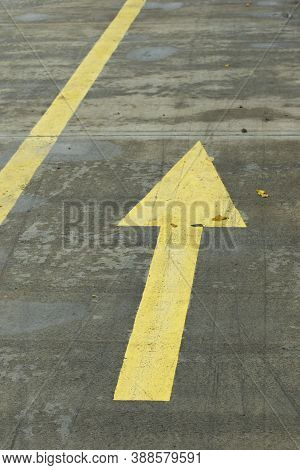 Yellow Lines And Arrows On A Wet Concrete Path In The Park. Yellow Directional Line On The Road.