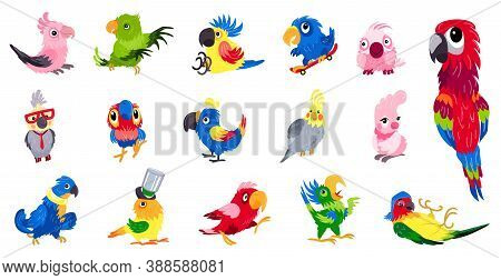 Parrot Icons Set. Cartoon Set Of Parrot Vector Icons For Web Design