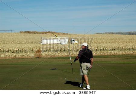 Senior Golfing During The Corn Harvest