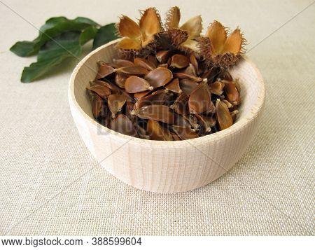 Beechnuts From The European Beech In A Wooden Bowl