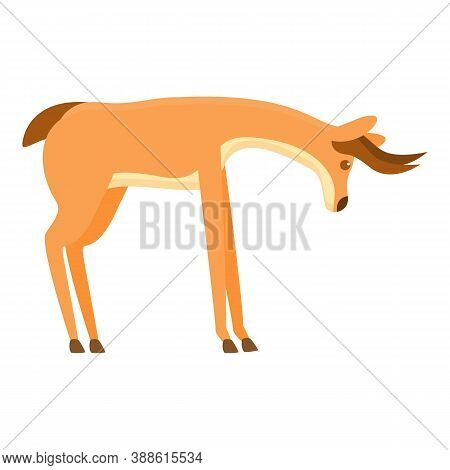 Cute Gazelle Icon. Cartoon Of Cute Gazelle Vector Icon For Web Design Isolated On White Background