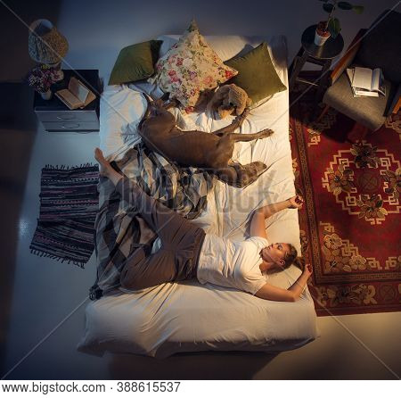 Portrait Of A Woman, Female Breeder Sleeping In The Bed With Her Dog At Home. Top View. Dressed Hous