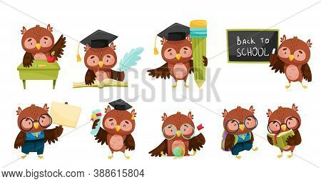 Clever Owl In Glasses Reading Book And Learning Geography Vector Set