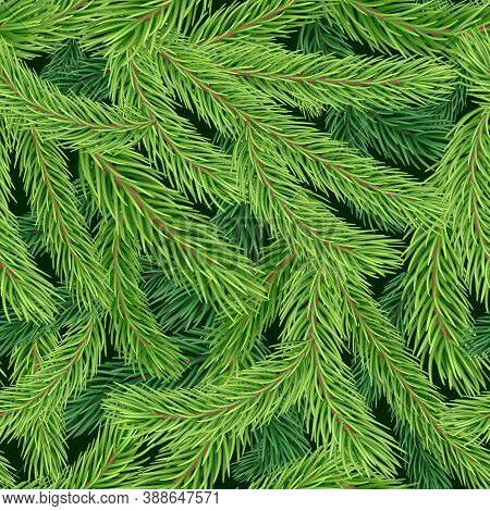 Seamless Pattern With Realistic Green Fir Or Pine Branches. New Year And Christmas Background With E