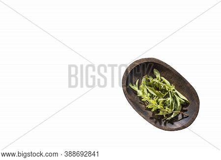 Stevia Rebaudiana - Leaves Of The Stevia Plant.