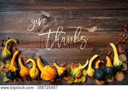 Colorful Pumpkins As Autumn Season Decoration, Text Give Thanks