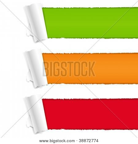 3 Color Torn Paper With Gradient Mesh,  Vector Illustration