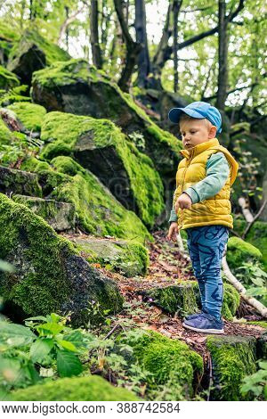 Toddler Boy Hiking And Climbing In Mountains, Family Adventure. Little Child Walking In Rocky Green