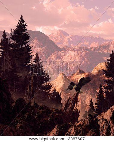 Bald Eagle In Sierra Nevada