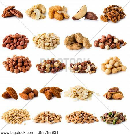 Set Of Nuts Walnuts, Brazil Nut, Almond, Cashew, Pine Nut Peanuts, Pistachios, Pecans Collection Iso