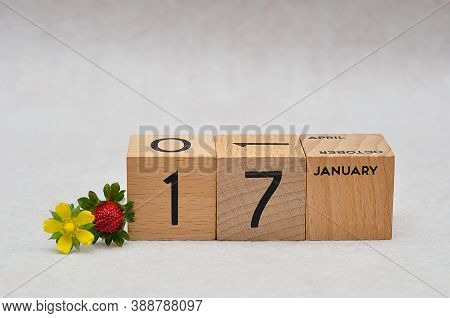 17 January On Wooden Blocks With A Strawberry And Yellow Flower On A White Background