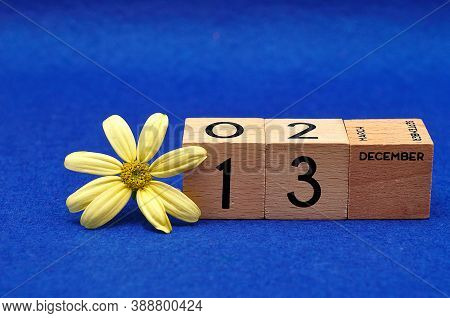 13 December On Wooden Blocks With A Yellow Flower On A Blue Background
