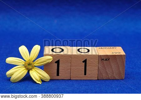 11 May On Wooden Blocks With A Yellow Flower On A Blue Background