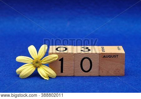 10 August On Wooden Blocks With A Yellow Flower On A Blue Background