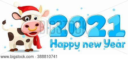 A Bull In A New Year S Hat And Scarf Stands. Year Of The Bull 2021