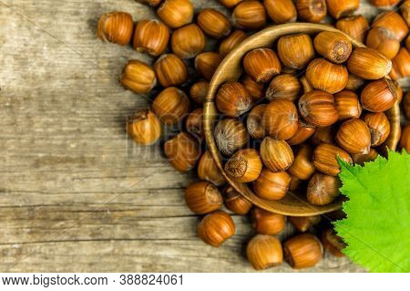 Hazelnuts On Wooden Table, Top View. Food Background. Heap Of Many Whole Ripe Brown Hazel Nuts. Vega