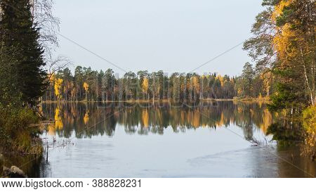 Great View Of The Lake, Pine Forest On Its Shore And Pine Trees Covered Islands. Silence Of Good Aut