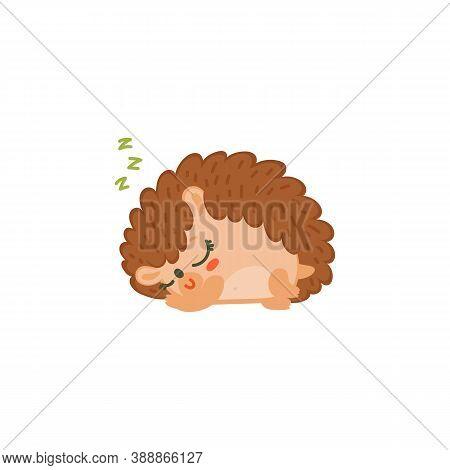 Sweet Sleeping Cute Hedgehog Cartoon Character Flat Vector Illustration Isolated.