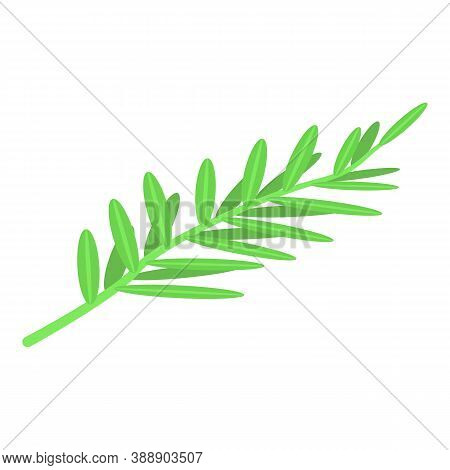 Green Rosemary Icon. Isometric Of Green Rosemary Vector Icon For Web Design Isolated On White Backgr
