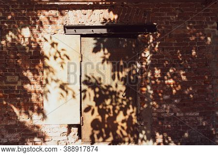Shadows Of Plants On The Old Brick Wall On The Sunny Day. Rusted Iron Door In The Middle