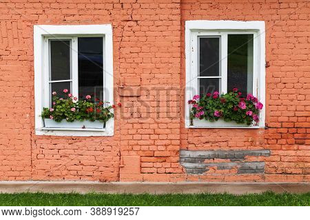 Two White Windows In Old Red Brick Wall With Potted Flowers, Background Photo Texture