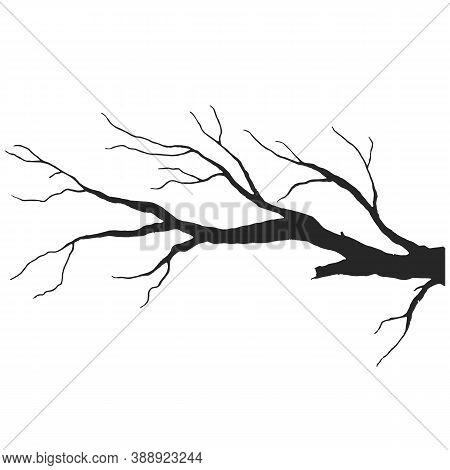 Tree Branch Design Halloween Design Vector Drawing
