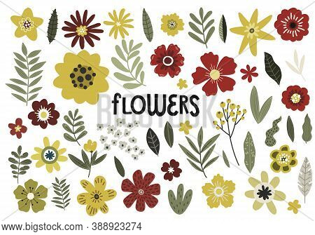 Set Of Yellow And Red Flowers And Branches, Vector Hand Drawing Pattern Design