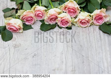 Roses On A Wooden Background. Beautiful Roses On A Light Background.