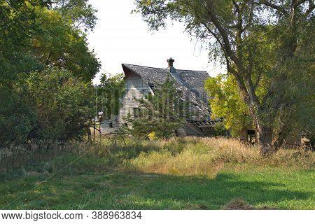Beautiful Old Wood Barn Standing In An Abandoned Farmstead