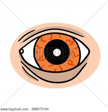 Eye. Human Organ Of Vision. Tired Look And Painful Look. Eyelid And Red Eyeball With Veins. See And