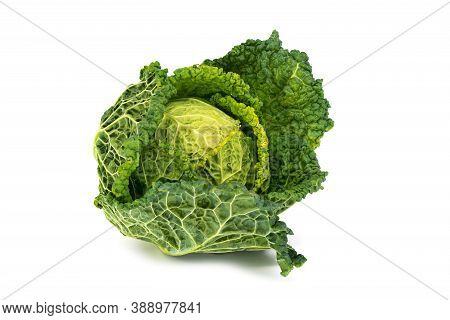 Savoy Cabbage, Close Up Of Fresh Vegetable On White Background
