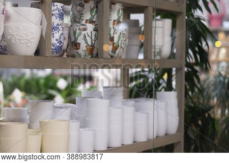 Flower Pots On The Shelves Of A Flower Shop In A Shopping Mall