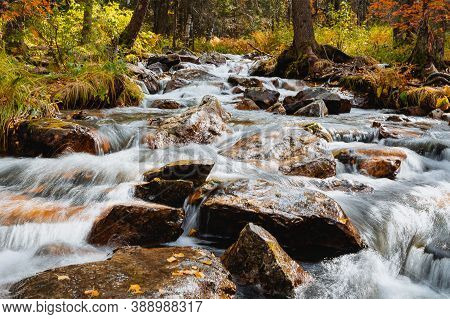 Mountain Stream Flows Through The Autumn Forest, Stormy Streams Of Water Flow Through Large Rocks, A