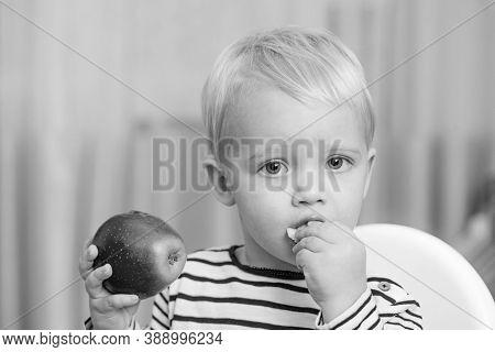 Baby Nutrition. Eat Healthy. Toddler Having Snack At Home. Child Eat Porridge. Kid Cute Boy Blue Eye