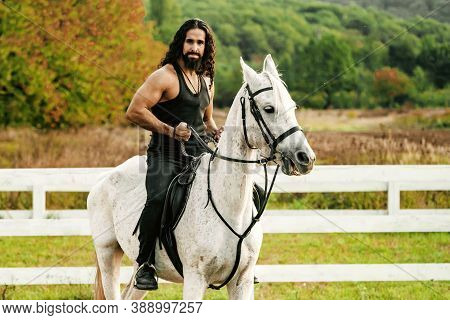 Rider On Gray Arabian Horse In The Field. Handsome Bearded Man Riding Horse At Farm. Beautiful Horse