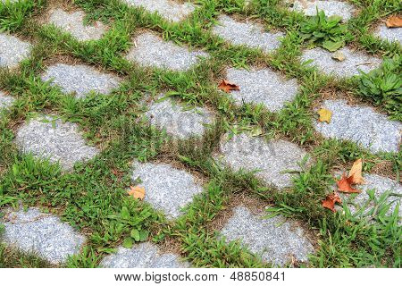 Patterned background of overgrown grass on cobblestone